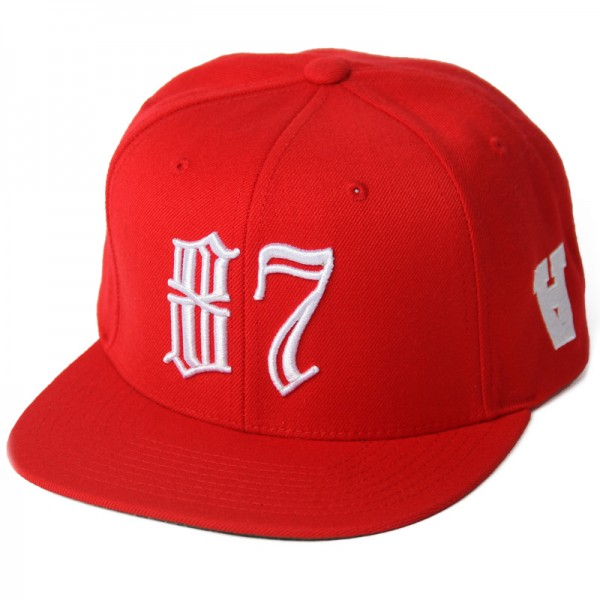 anmlhse-youth-in-revolt-red-snapback-87